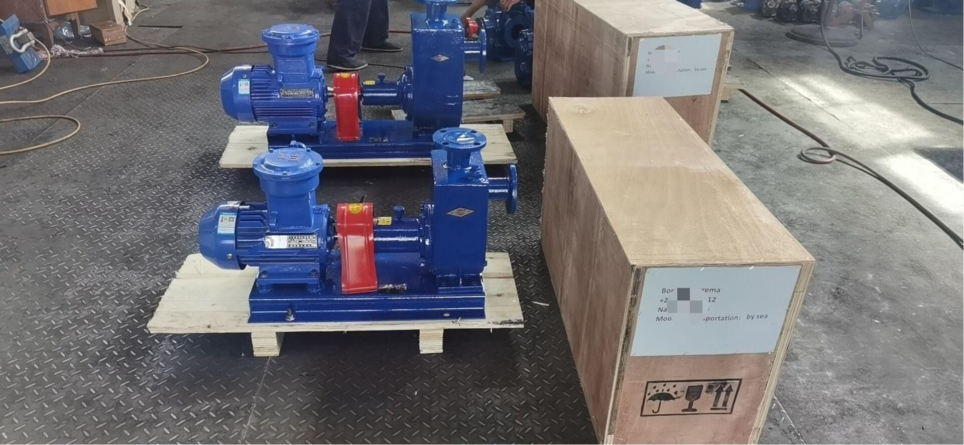 Two Sets of CYZ Centrifugal Oil Pump