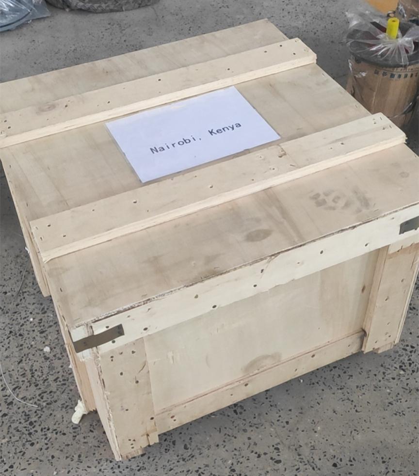 Horizontal Gear Oil Pump Wooden Package