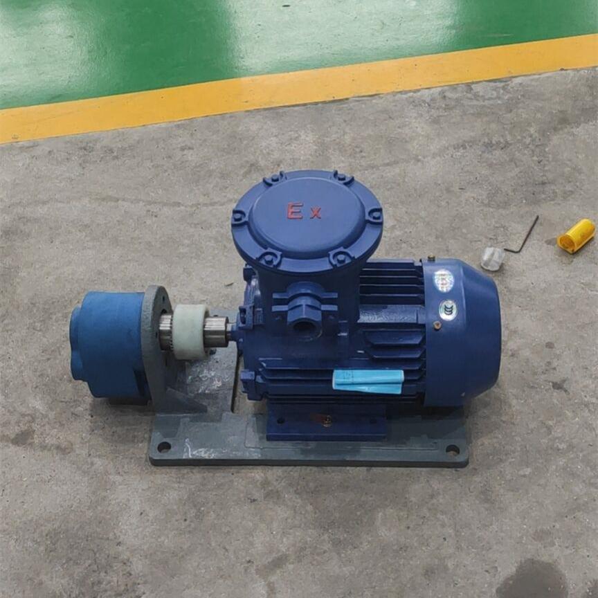 WBZ100 Horizontal Gear Oil Pump